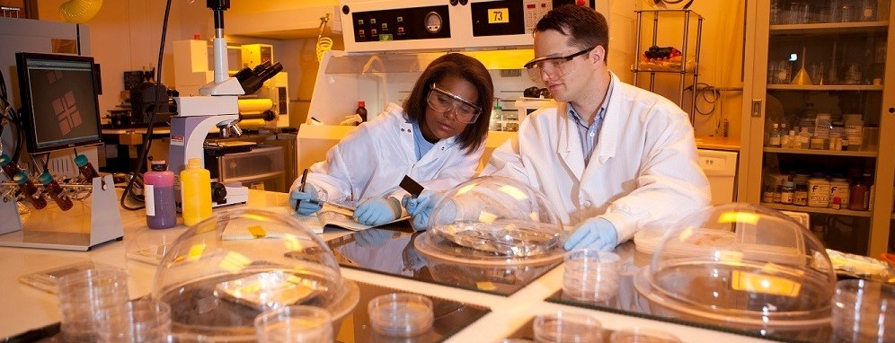 A man and woman working inside a laboratory
