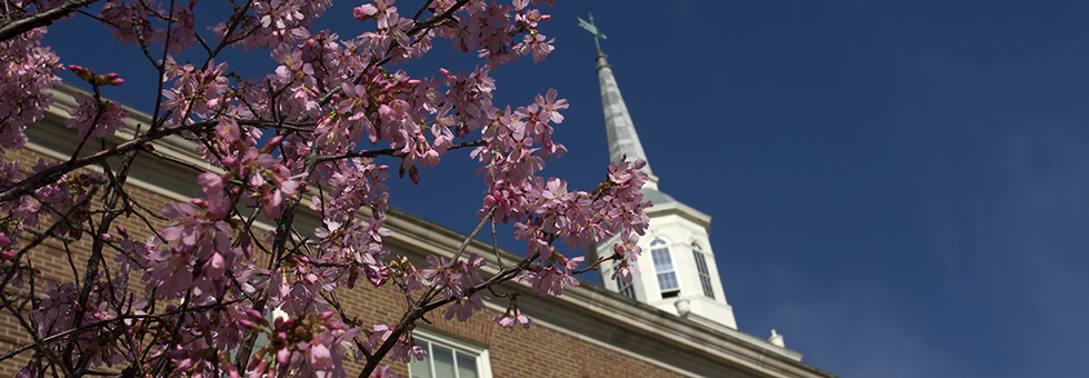 Flowers in front of McMicken Hall