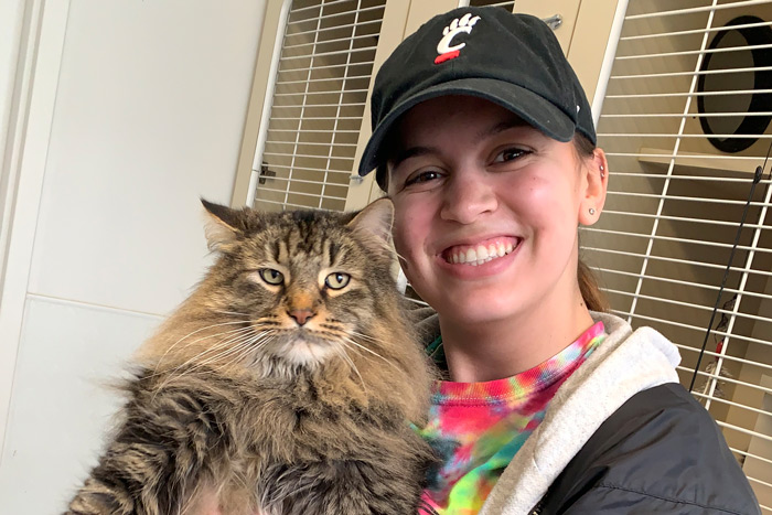 A UC student holds a cat at an animal shelter