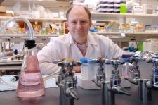Dr. Plas in lab