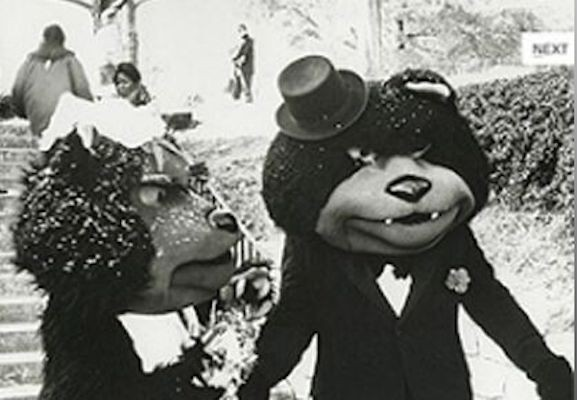 Black and white photo of two Bearcat mascots getting married