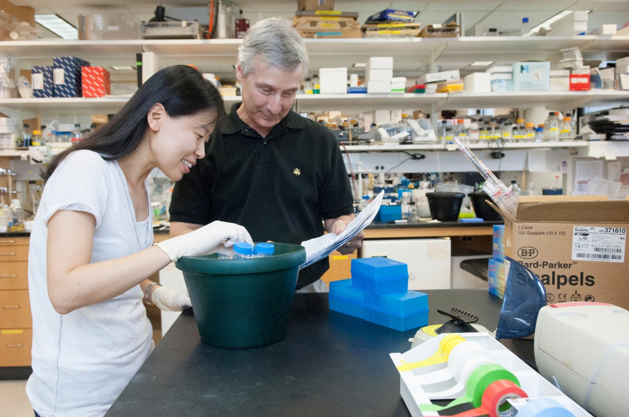 Rockefeller University professor C. David Allis examines an experiment on a lab bench with a female student.