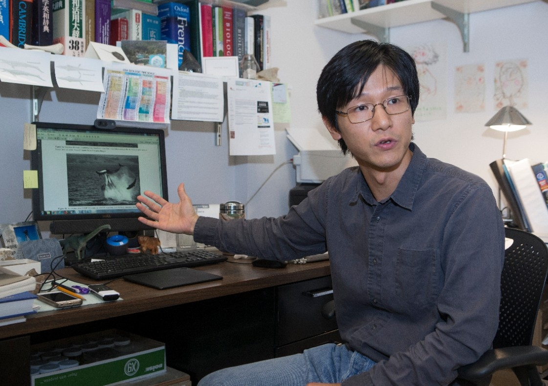 UC professor Takuya Konishi gestures to his computer monitor showing an image of a killer whale striking a dolphin with its snout.