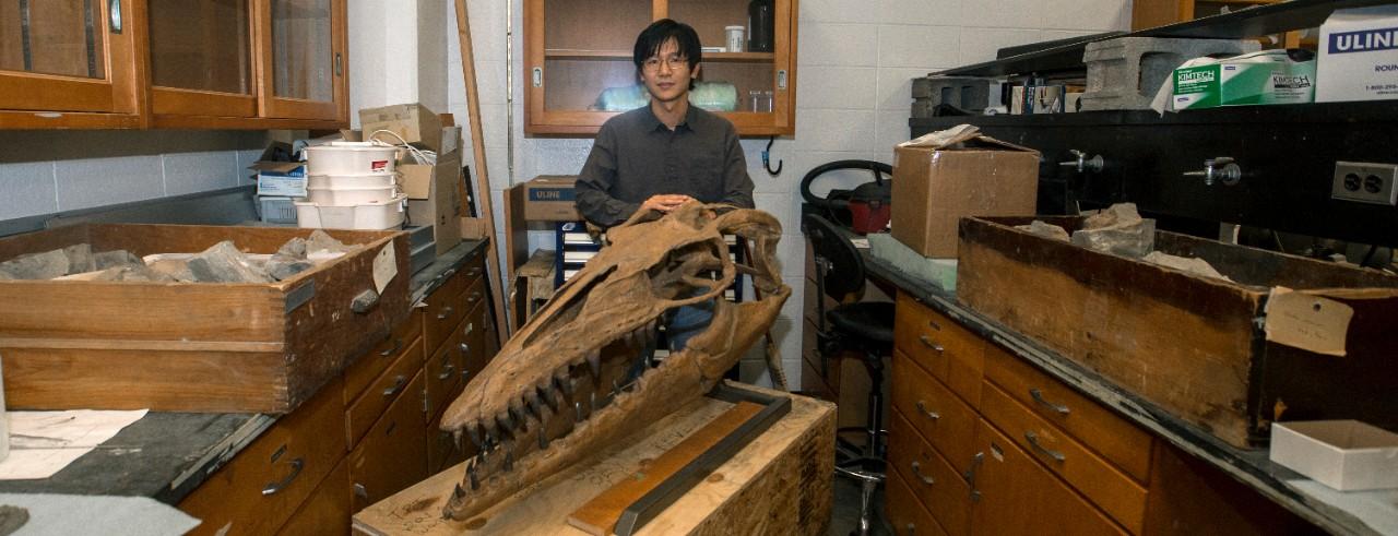 UC professor Takuya Konishi stands behind a model of a mosasaur skull in his biology  lab.