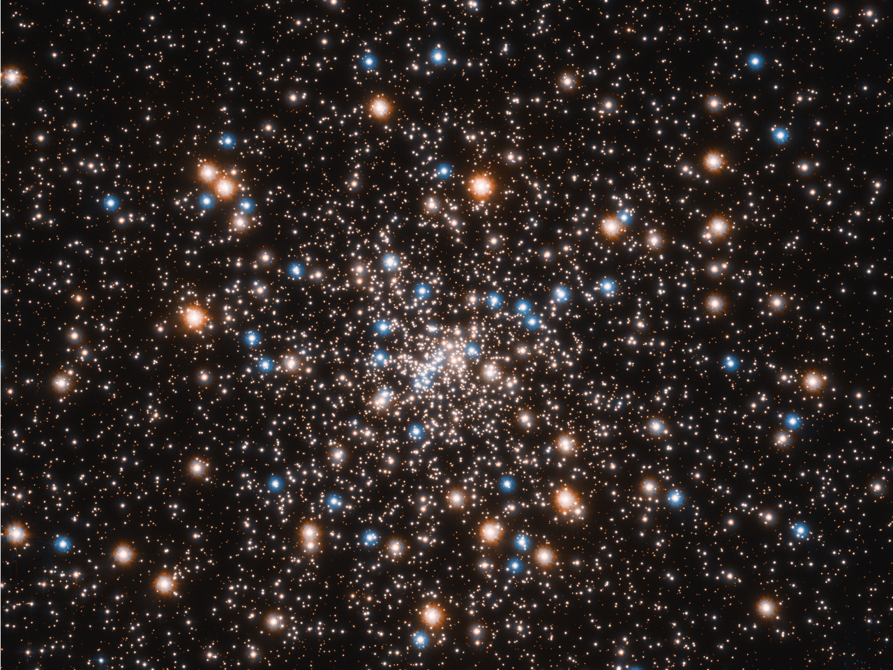 The colorful dots that make up the stars of a distant galaxy.