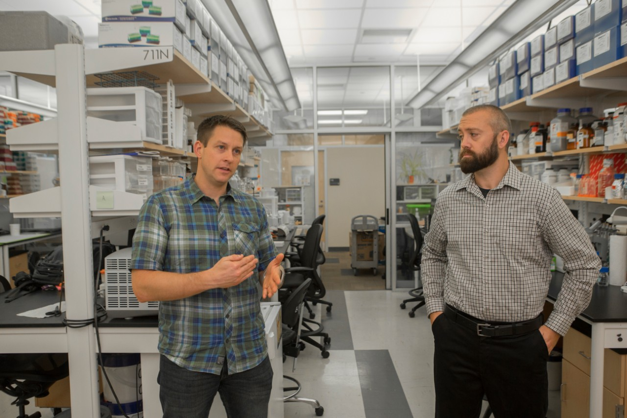 UC professors Andrew Rosendale and Joshua Benoit stand talking in their lab surrounded by lab benches and equipment.