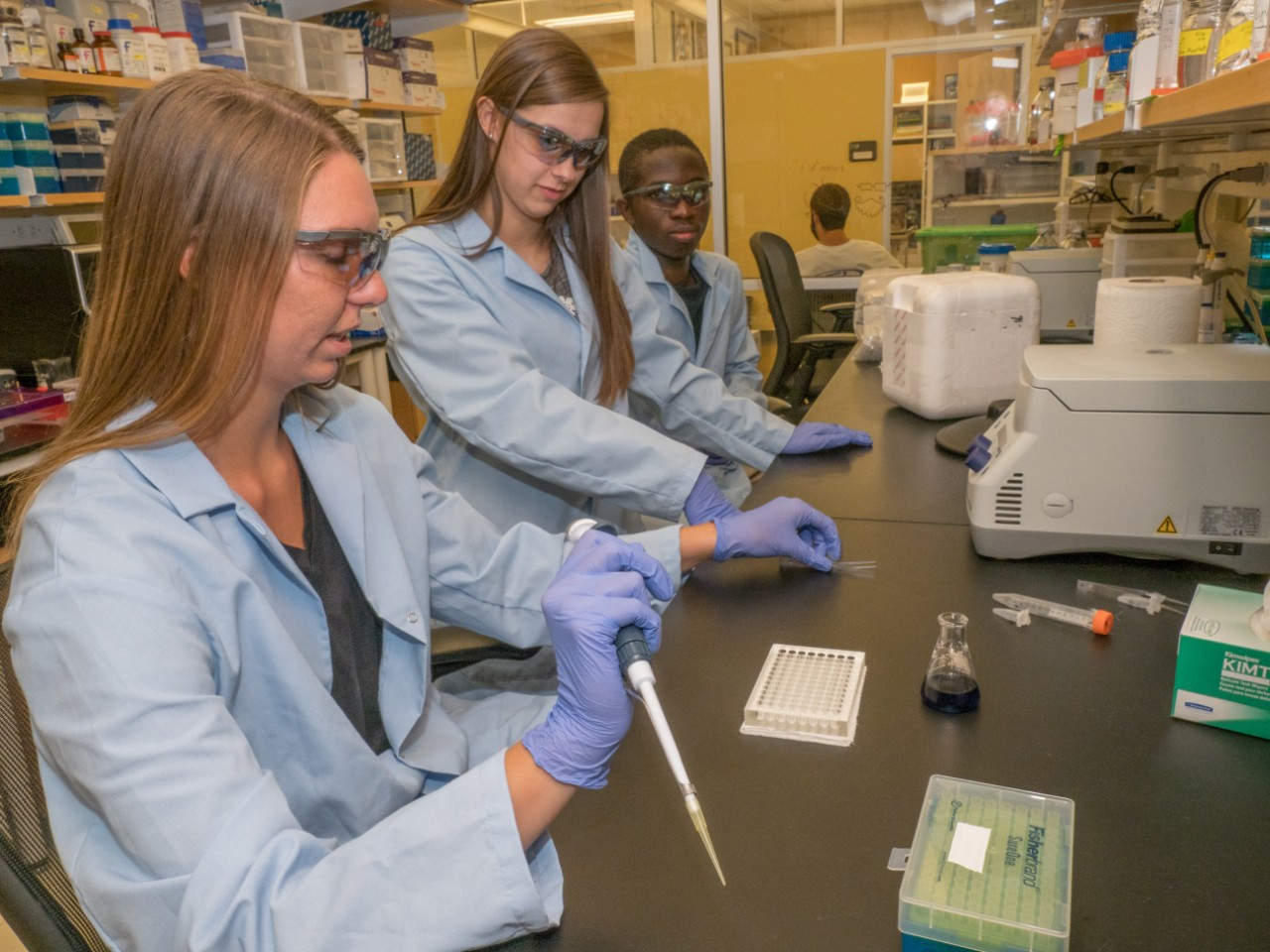 Students in labcoats and safety glasses work at a lab bench with pipettes and other equipment.