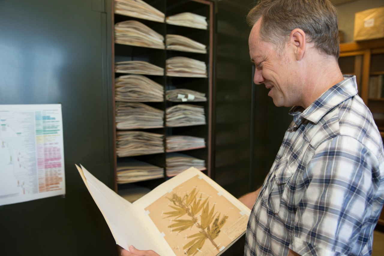 Eric Tepe holds an open folder containing a plant specimen in front of cabinets full of similar folders containing plant specimens.