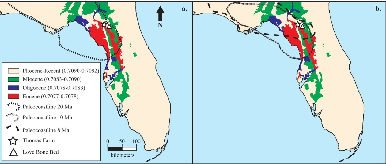 A map of Florida identifies the changing coastline and the locations where ancient horse fossils were found.