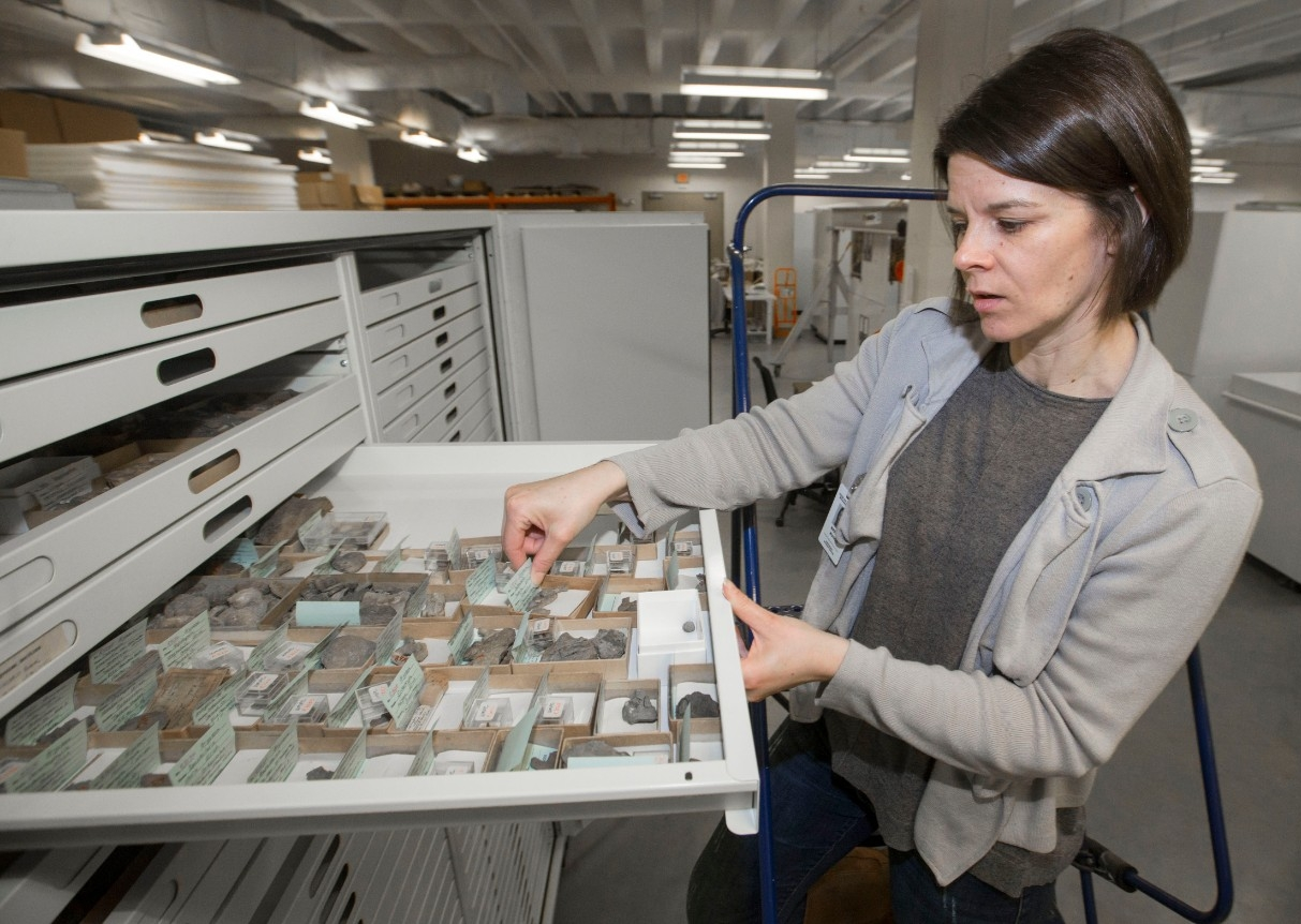 Brenda Hunda pulls open a wide drawer containing dozens of tiny fossils with handwritten labels.