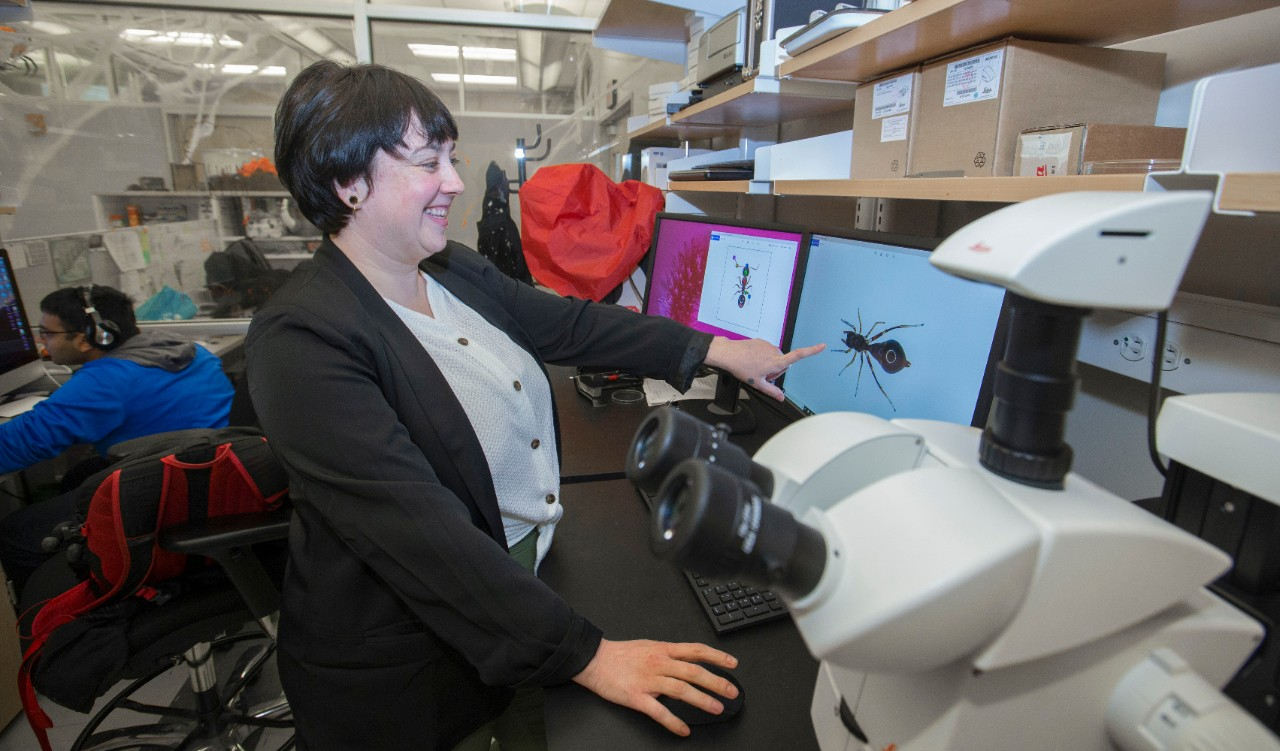 Alexis Dodson smiles and gestures to an image of a spider on her computer screen in a biology lab full of shelving full of equipment.