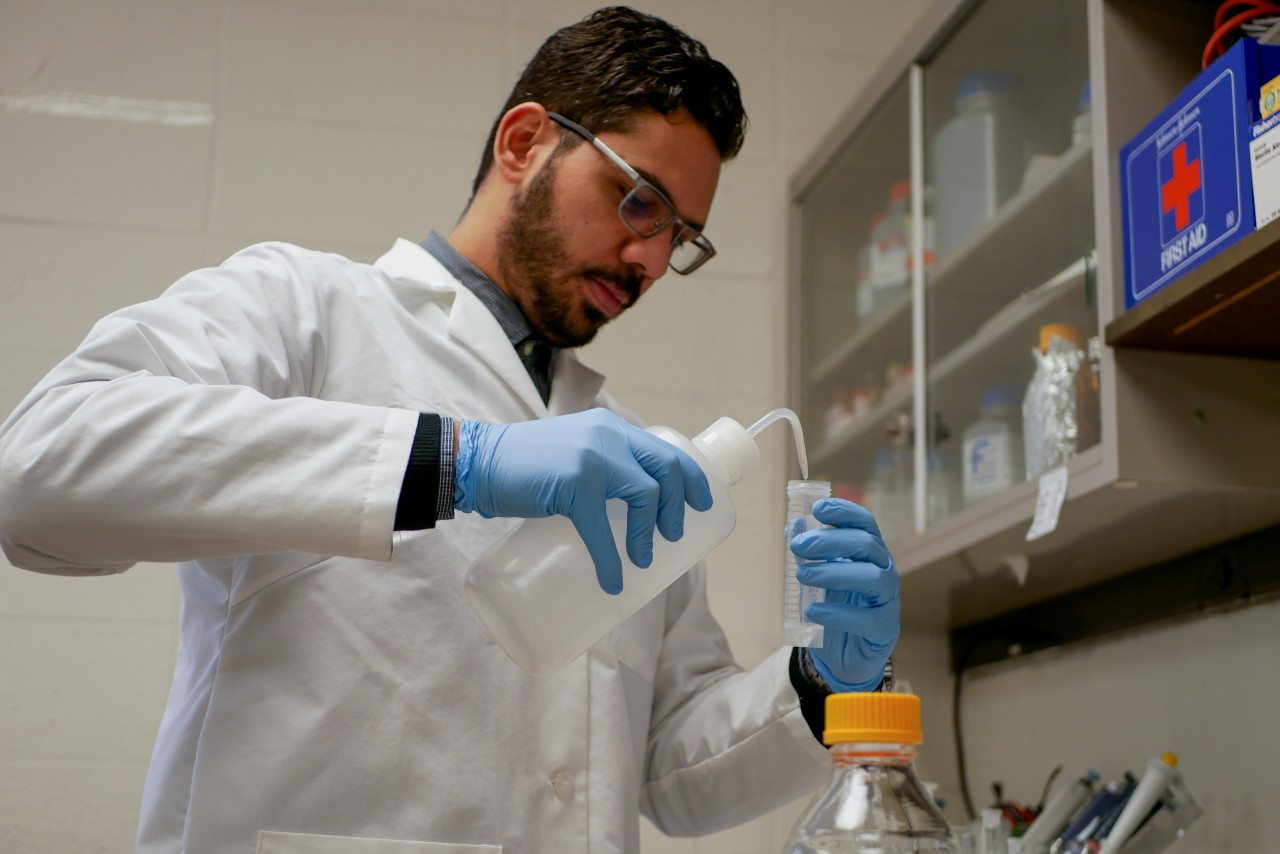 Dewidar injects water into a test tube