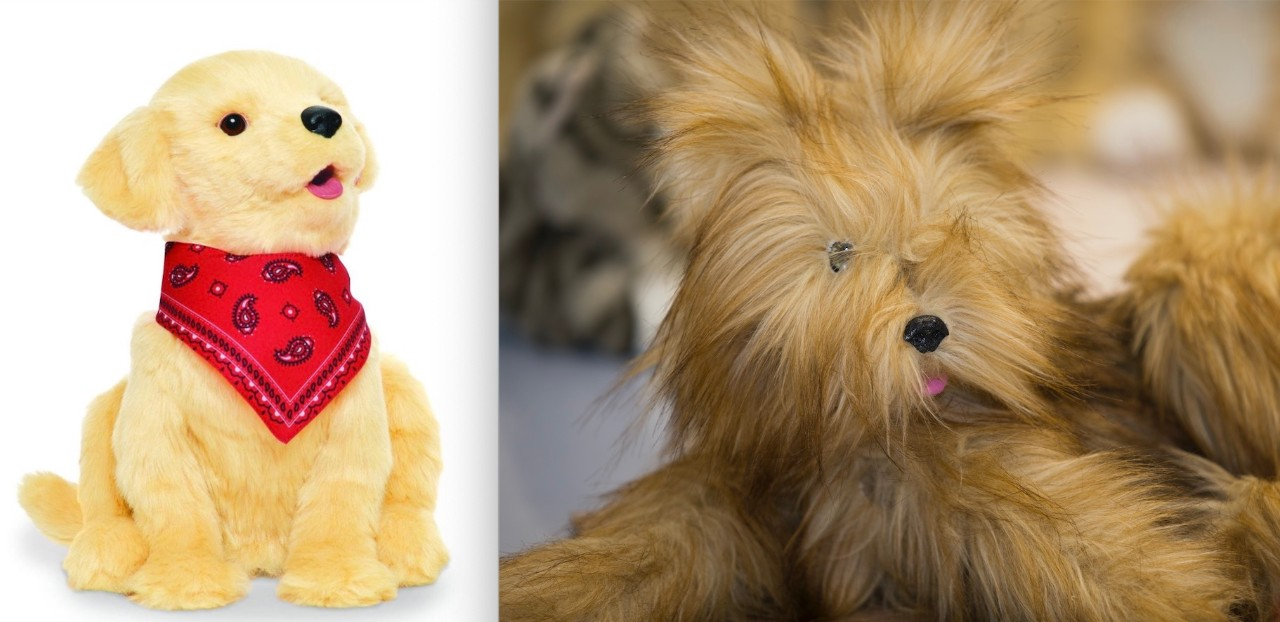 side by side image of old version of yellow robotic dog and new version that resembles a brown Yorkshire terrier