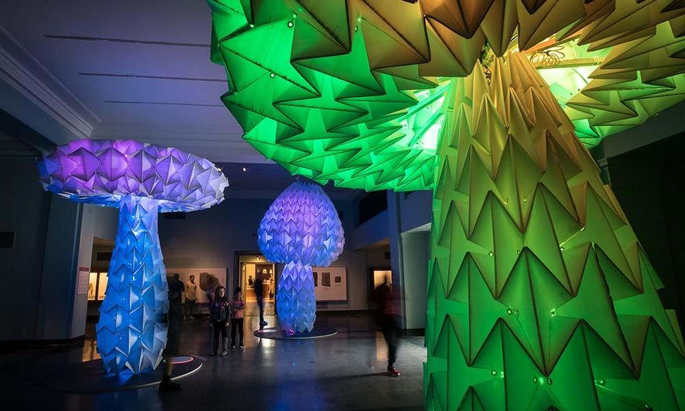 Giant, colorful light-up mushroom art installation