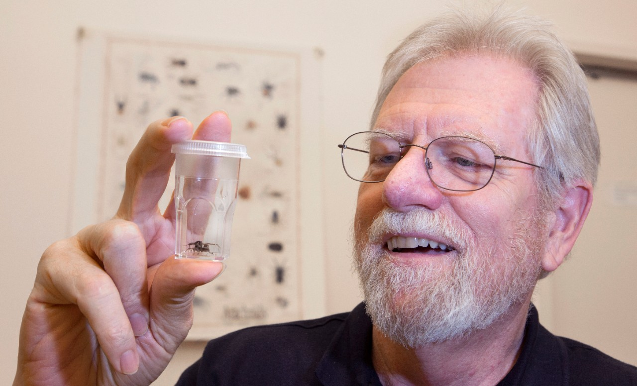George Uetz holds up a clear container holding a spider.