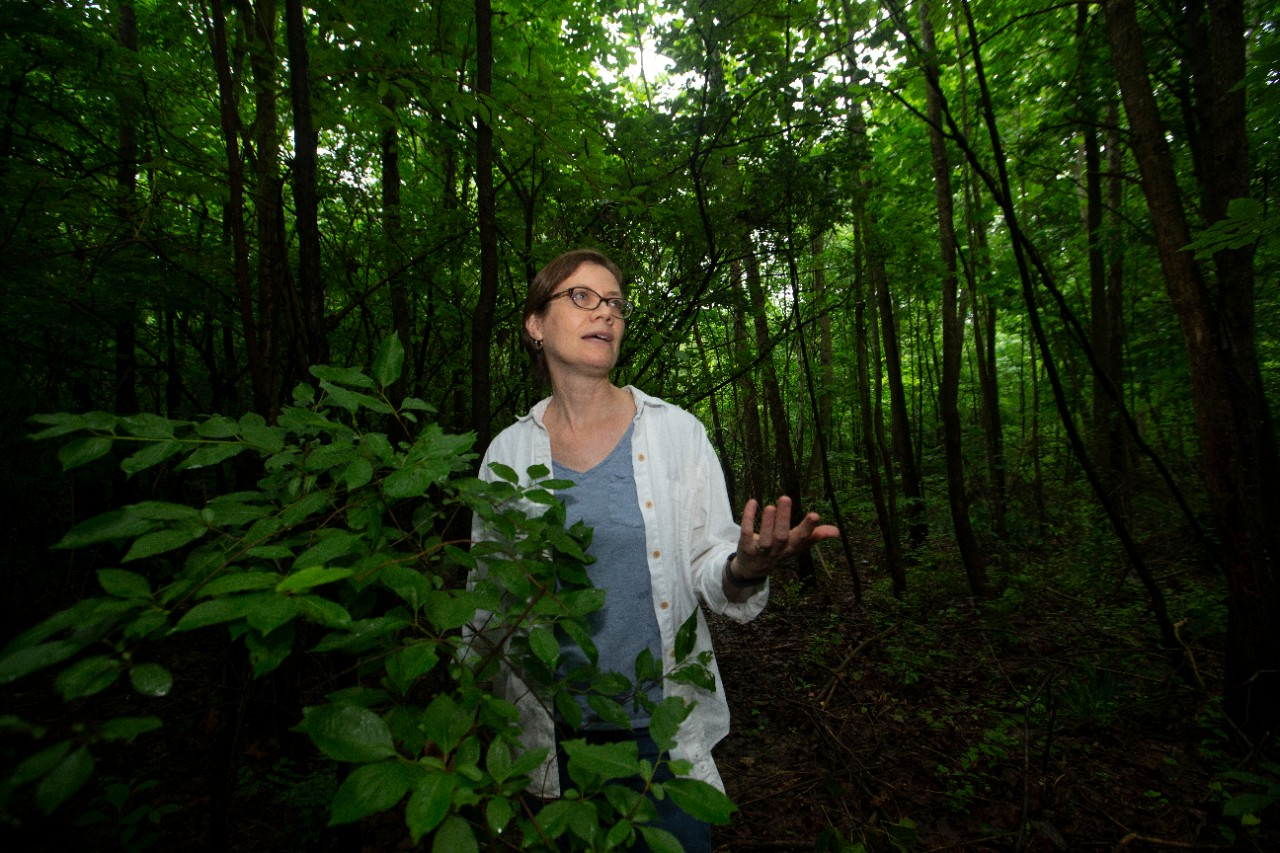 Theresa Culley stands in a forest in front of a green sapling.