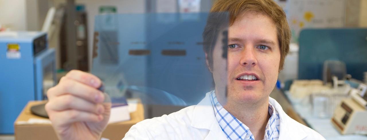 Tom Cunningham, PhD