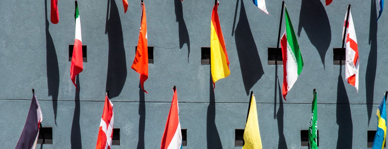 Flags of numerous countries hanging from poles in rows on a grey wall