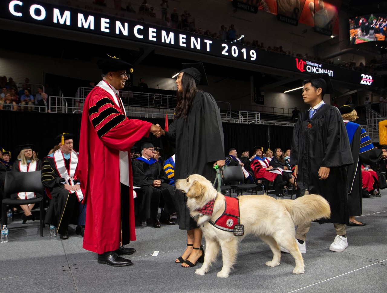 A student in her cap and gown shakes hands with President Pinto alongside her service dog.