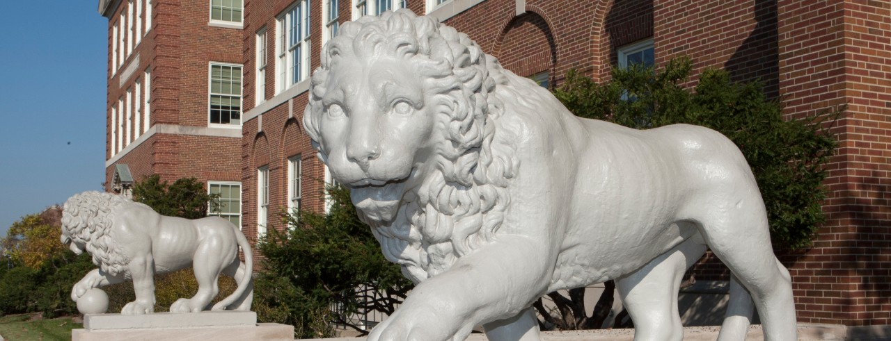 The lions outside McMicken Hall.