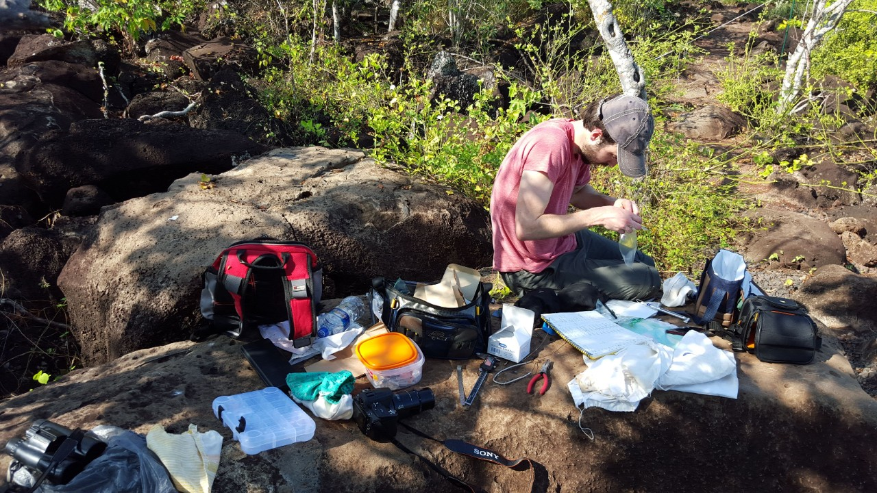 Jack Stenger sits on the ground surrounded by scientific equipment while he bands birds.