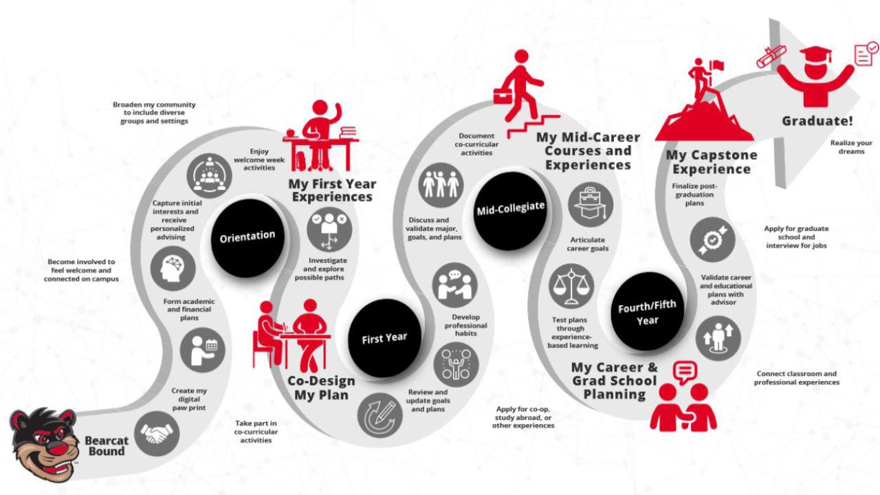 Bearcat Promise pathway illustration