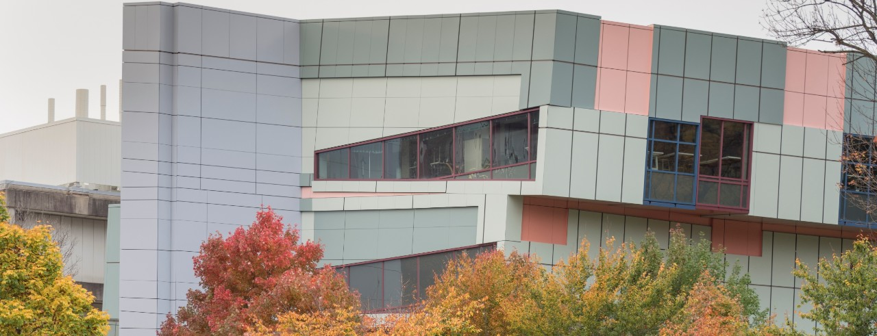 DAAP building features unusual angled architecture and pastel colors, among changing fall leaves