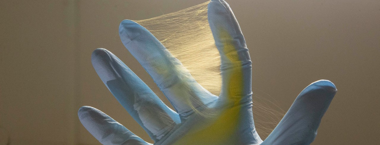 A spiderweb of fibers covers a gloved hand.