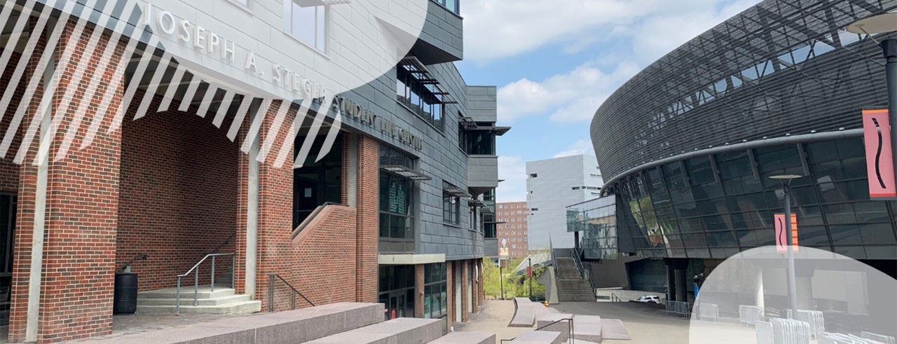 Mainstreet between Steger Student Life Center and Campus Recreation
