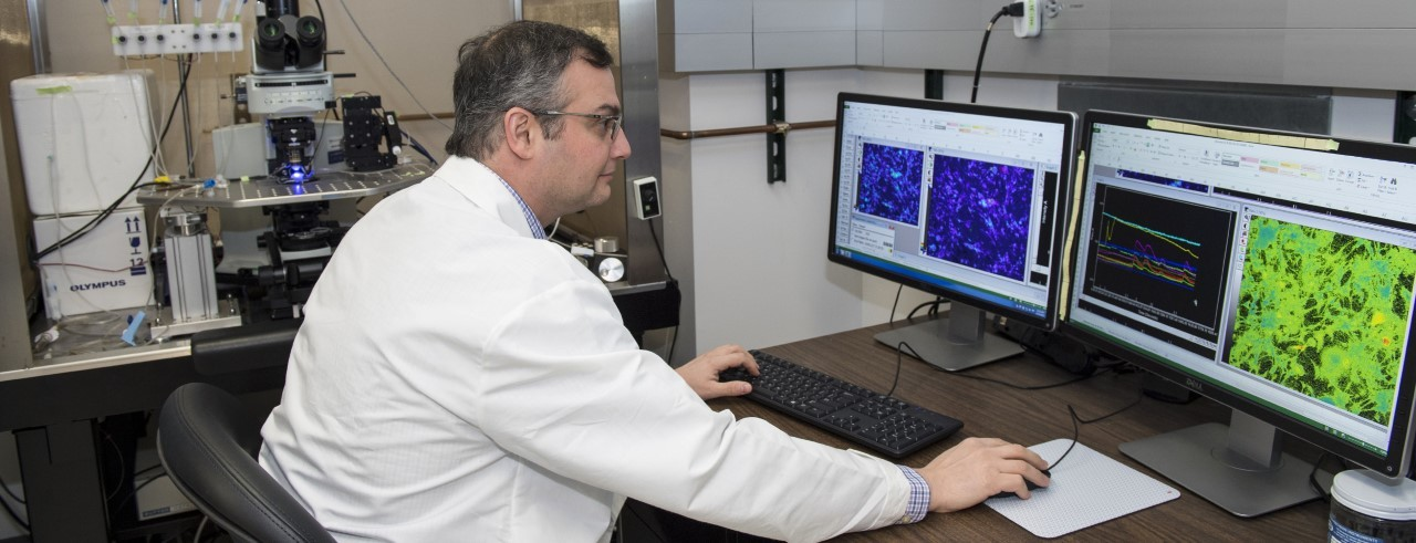 Steve Davidson, PhD, working on a computer in his lab.