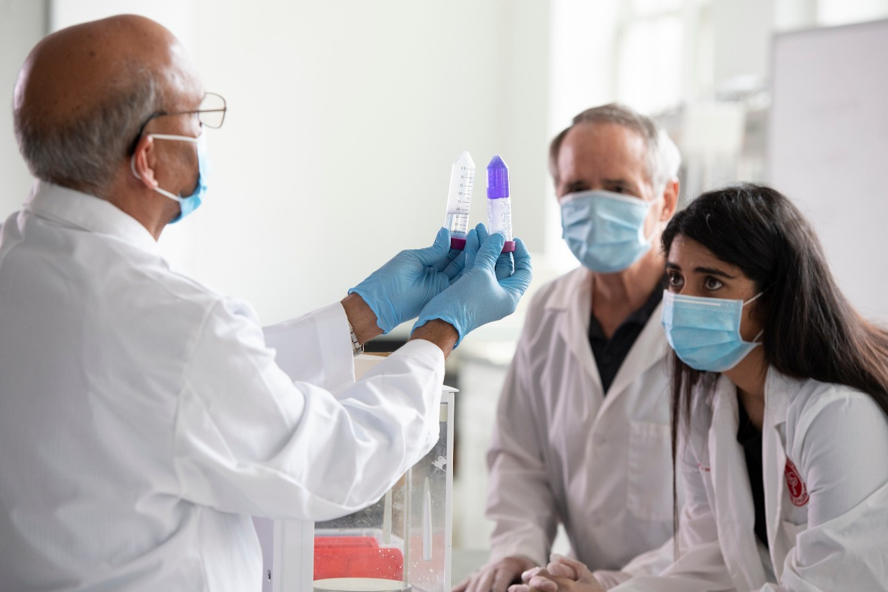 Members of the UC College of Pharmacy work in a lab.
