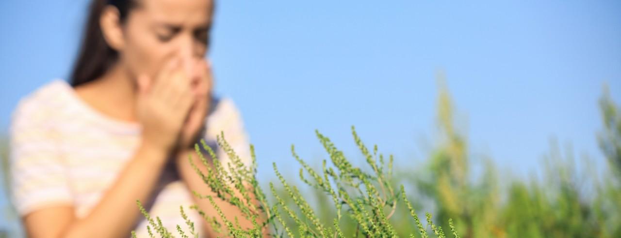women sneezing in a field of allergens.