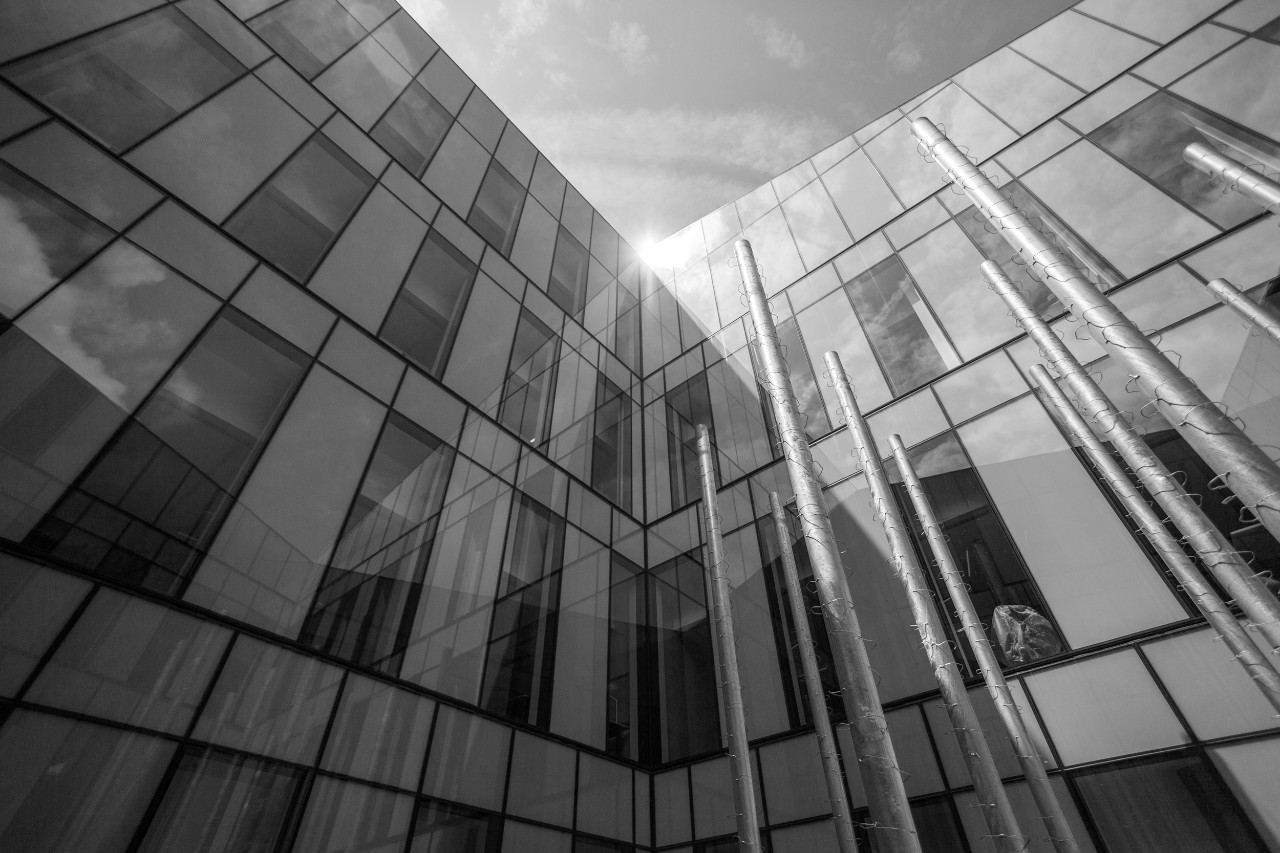 black and white photo of Lindner Hall Garden looking upwards towards sun