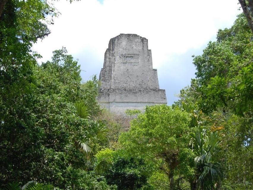 A temple at the ancient Maya city of Tikal.