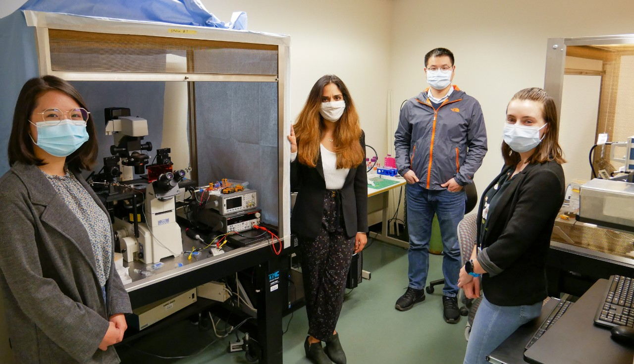 Leyla Esfandiari and her research team stand in the lab