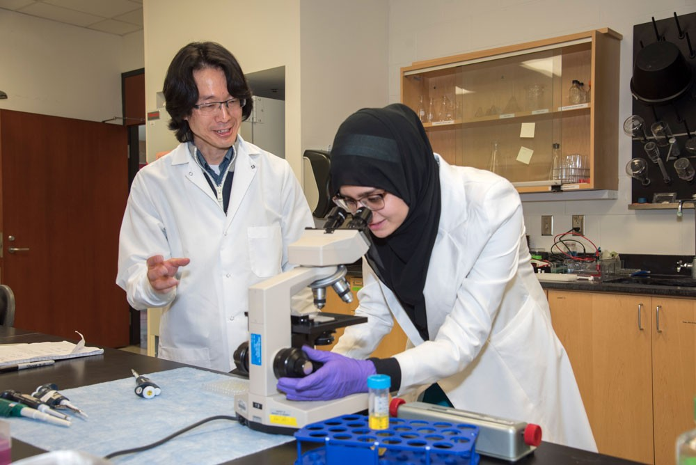 Professor Yoshi Odaka and student Aqsa Raja working in the lab