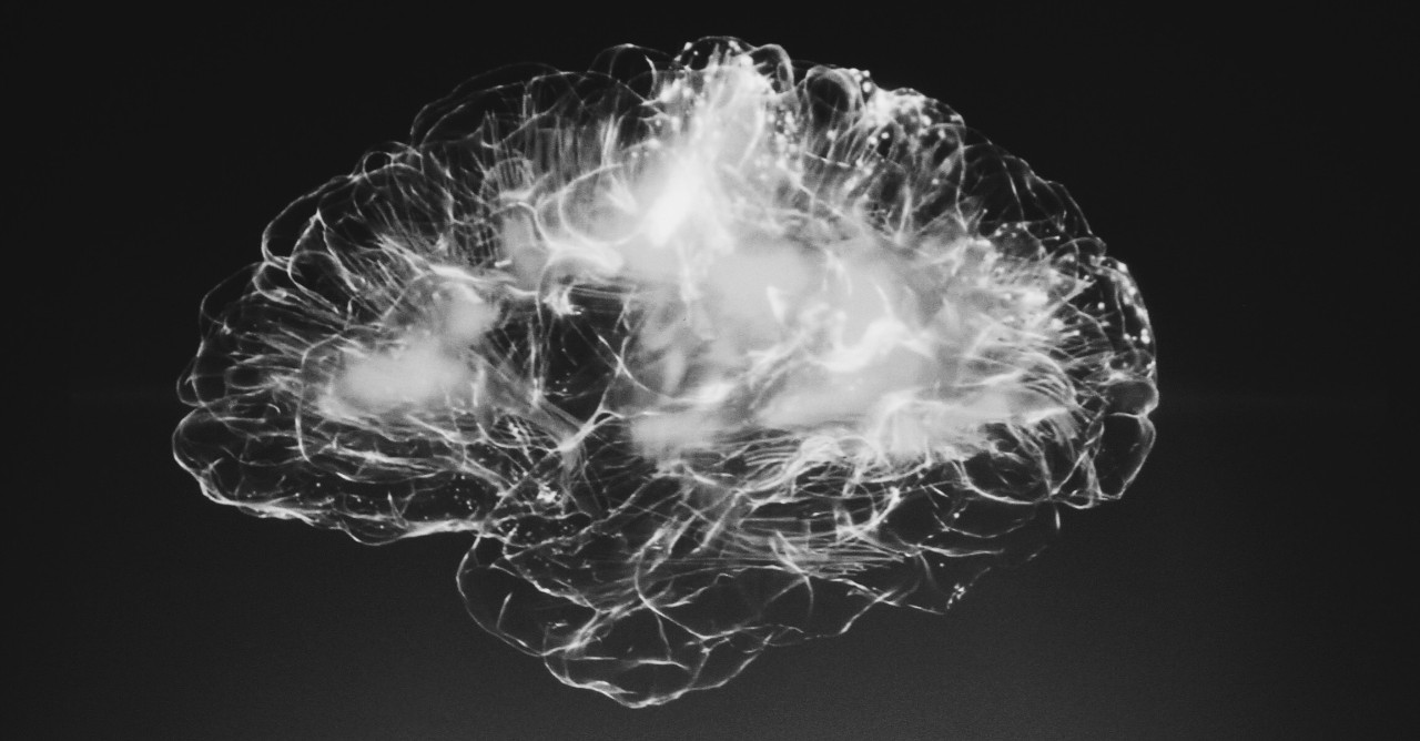 Black and white drawing of a human brain