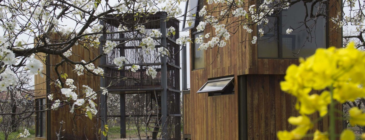 Three small wood-and-steel structures stand in a blossoming pear tree orchard.