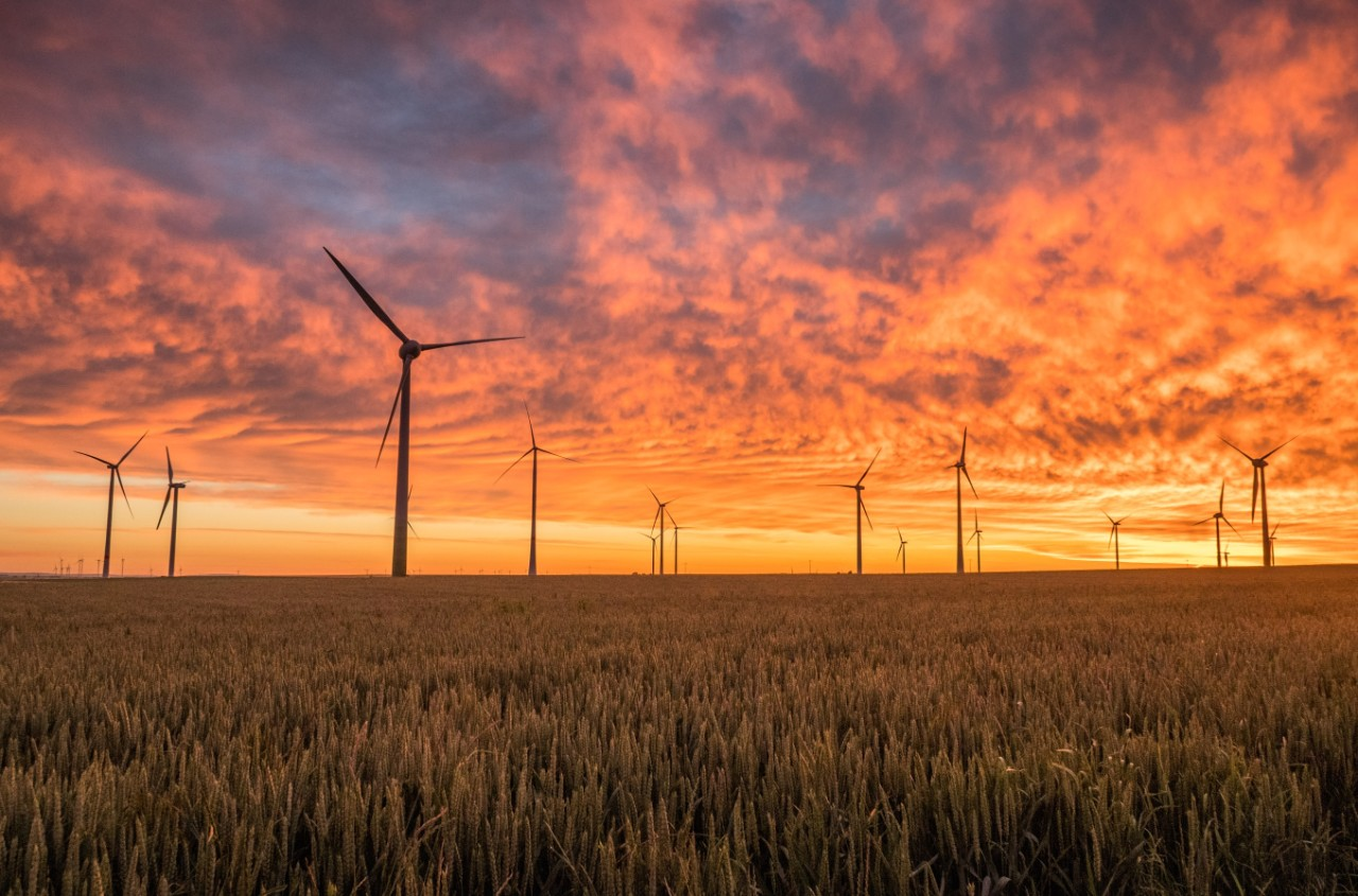 Windmills dot a meadow in front of a golden sunset or sunrise.