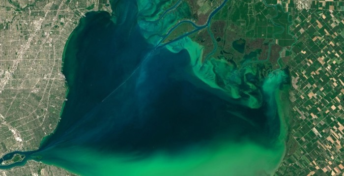 satellite view of Lake Erie with an algal bloom